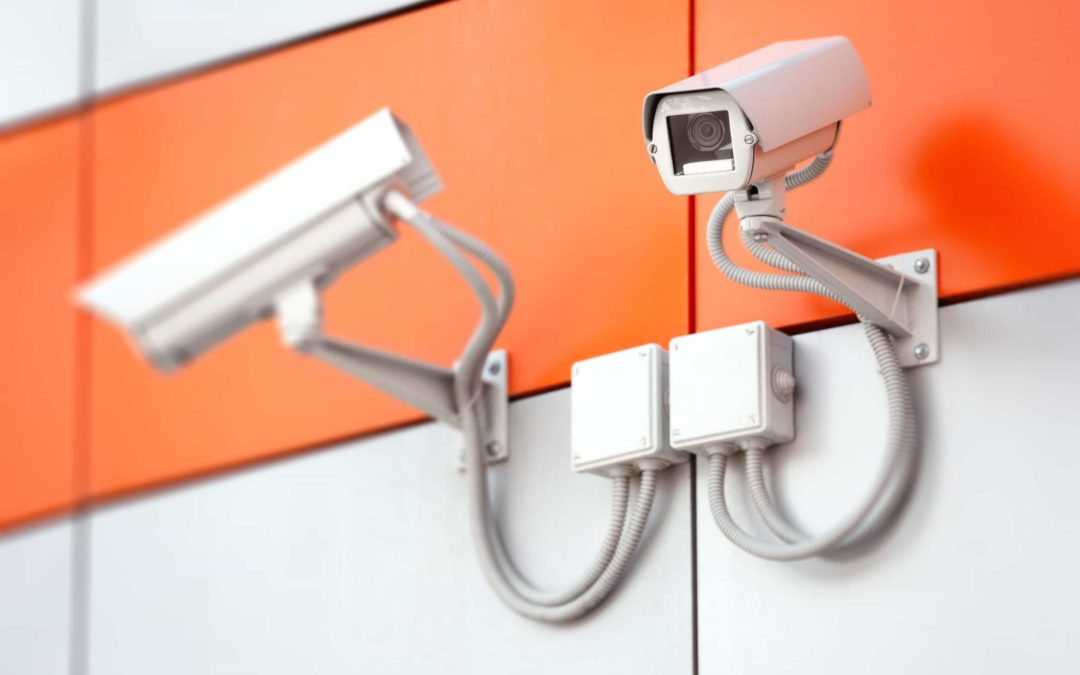 Does My Business Need Video Surveillance?